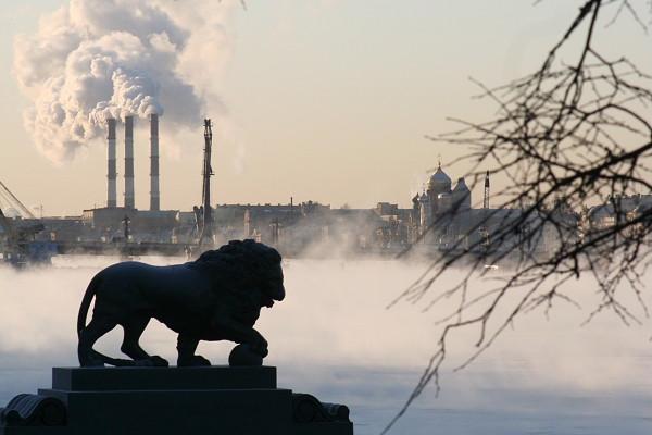 Ежедневно в воздух Петербурга поступает 685 тонн опасных химических соединений