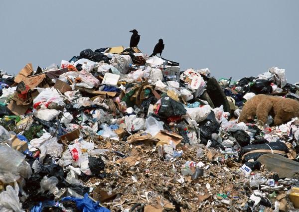 Эксперты считают, что нужно срочно переходить на раздельный сбор мусора