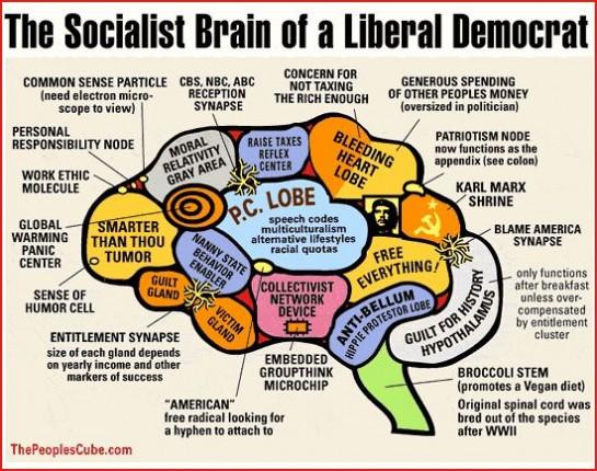 Мозг американского либерала