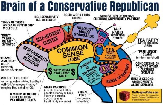 Мозг американского консерватора