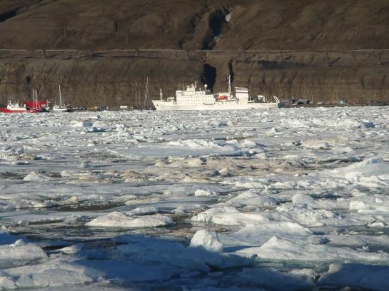 Мы стоим во внутреннем заливе, в бухте какого-то населенного пункта, который, видимо, и есть «столица» Лонгйербйен (Longyearbyen). Вокруг — совершенно лишённые растительности скалы и невысокие горы, частично покрытые льдом. Растительности не видно и на суше, в районе населённого пункта