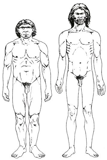 Ближе всего к человеку геном Неандертальца — 99,5% совпадение. Это параллельная человеку раса (вид) гоминидов жила еще 20-30 тысяч лет назад сосуществуя с кроманьонцами вида homo sapiens на протяжении 100-150 тысяч лет и 10-20 тысяч лет в Европе / На рисунке: неандерталец и кроманьонец