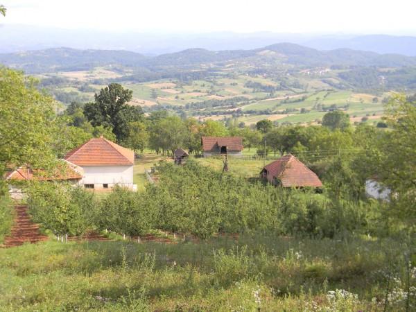 Сербия – маленькая страна. И, несмотря на это, породила много типов, как людей, так и культур. Разве лишь одно это не причина побывать в Сербии?