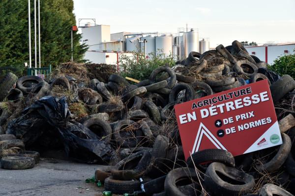 """На баррикаде из покрышек и навоза табличка с надписью: """"Сельское хозяйство в бедствии. Цены  +; нормы -"""""""