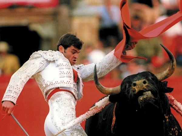 """Тореадор, герой романа Карлоса Рейеса, говорит: """"Я уверен, что публика представляет себе, что тореро - это Испания, а бык - это Судьба / AFP PHOTO   EPA/EFE/Emilio Morenatti"""