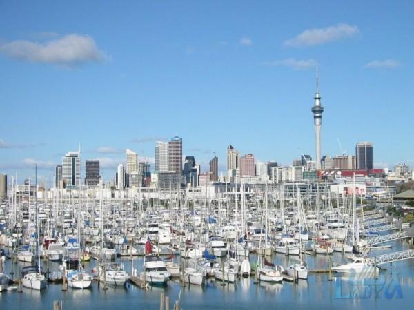 Окленд известен ещё как «город парусов»: в городской агломерации только официально зарегистрировано свыше 135 тысяч яхт и моторных лодок