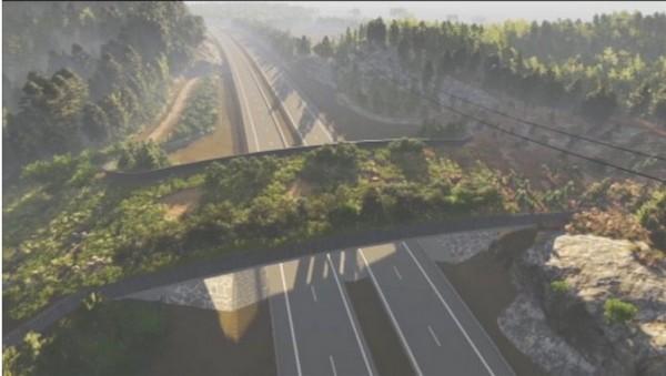 Переправа для животных будет обычным бетонным мостом размером 55 метров в длину и 15 метров в ширину, покрытым зелёными насаждениями