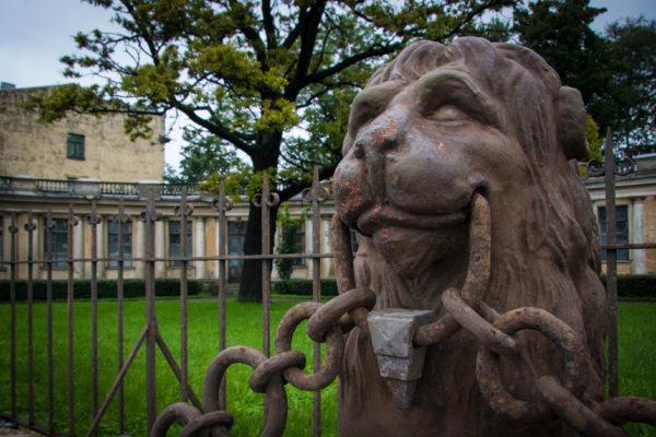 Дворец с львиной оградой. Его снимали в фильме «Приключения итальянцев в России». Это — дача Кушелева-Безбородко