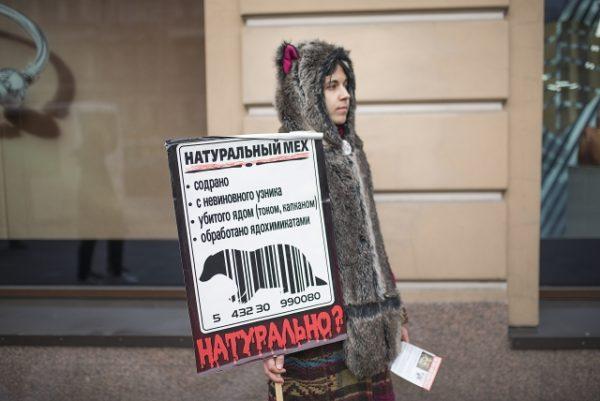 Петербуржцы призвали людей не убивать животных ради одежды. Акция прошла в рамках IV Международной кампании «Животные - не одежда. 2016»