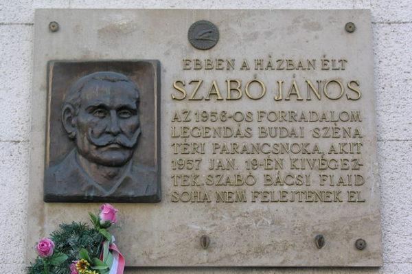 59-летний водитель грузовика Янош Сабо пленных отпускал. Этот добродушный основательный мужик вообще не любил войну. Но и его повесили, как беспощадного Дудаша