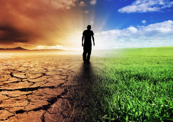 Сельское хозяйство во всём мире страдает от «деградации и засоления почв, избыточного использования водных ресурсов, снижения генетического разнообразия сельскохозяйственных культур и скота