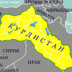 Омиз САЕДИ: «Иранское государство остаётся тиранией»
