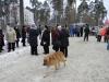 vsevolojsk-25-02-12-15
