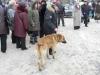 vsevolojsk-25-02-12-21