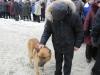 vsevolojsk-25-02-12-23